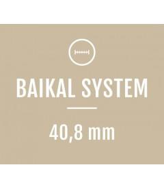 Baikal System
